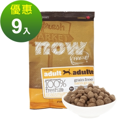 Now! 鮮肉無穀天然糧 成犬配方 100克 九件組