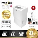 Whirlpool惠而浦 32L 2級清淨除濕機 WDEE70AW 送美膳雅攪拌棒