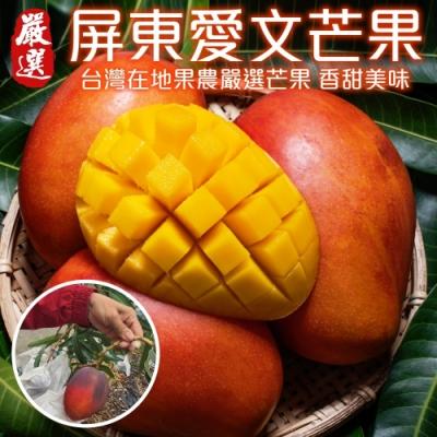 【天天果園】屏東枋山愛文芒果10斤(20-24顆)