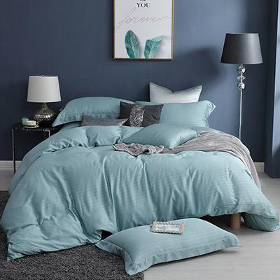 LASOL睡眠屋-100%奧地利天絲 特大兩用被床包四件組lasol經典原色