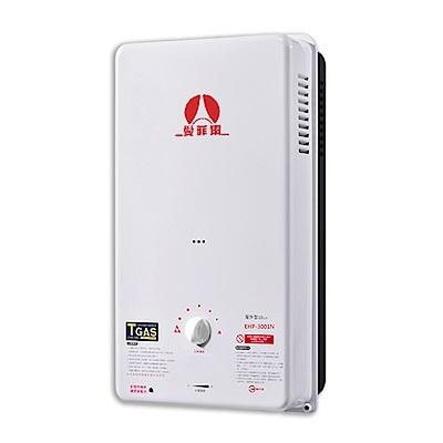 愛菲爾eiffel標準型熱水器RF10L(天然瓦斯)