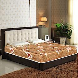 AVIS艾維斯 楓葉印花護背式冬夏兩用彈簧床墊-雙人加大6尺