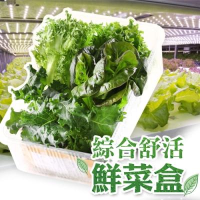 【愛上新鮮】新鮮爽脆鮮菜4盒(150g±5%/包)