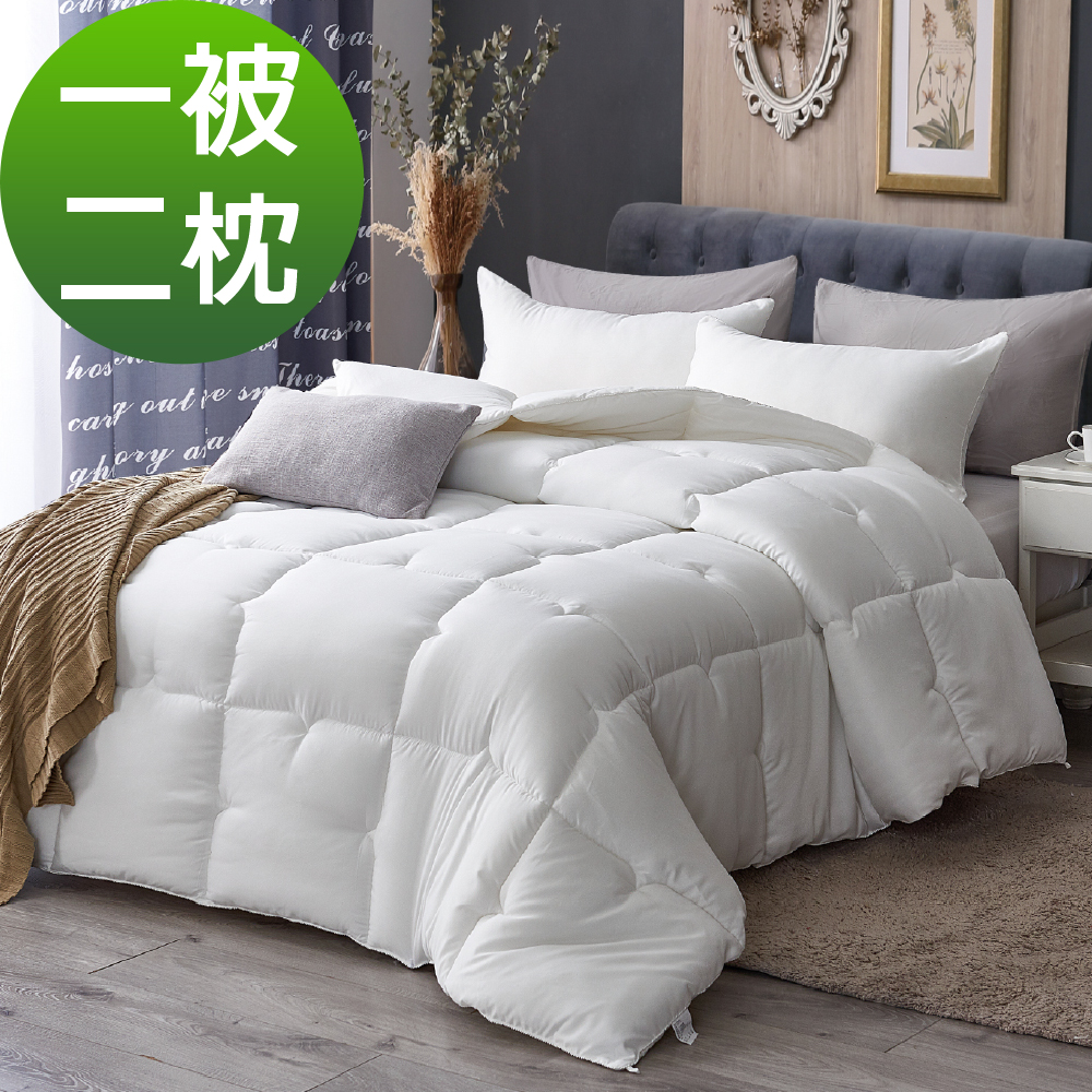 買一送二~Grace Life超細纖維 科技抗寒專用羽絲絨暖被一入贈羽絲絨枕兩顆