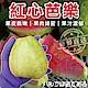 【天天果園】燕巢紅心芭樂 x3斤 product thumbnail 1