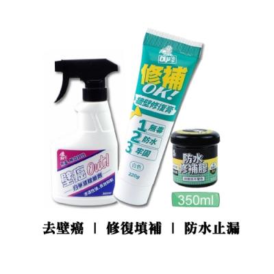 Finesil-DIY 壁癌修復組(小) 防漏水/壁癌根治