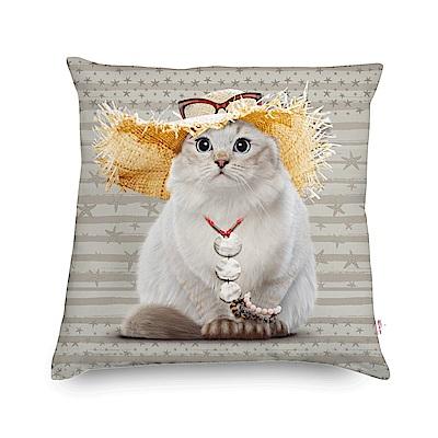 法國數位藝廊 貓貓抱枕/靠墊-渡假(霧灰)-含芯60x60
