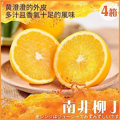【天天果園】南非無籽甜橙(柳丁)每箱34粒 x4箱
