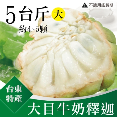 家購網嚴選 台東大目牛奶釋迦 5斤/盒 (大果,4-5顆)