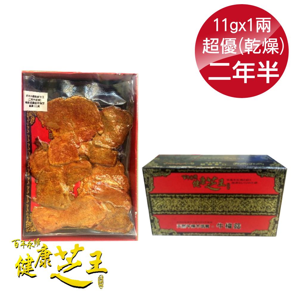 百年永續健康芝王 (兩年半乾燥) 超優級牛樟芝 乾燥品 11g x1兩