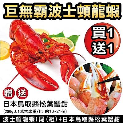 【海陸管家】海鮮雙拼組-波士頓龍蝦+鳥取縣松葉蟹鉗