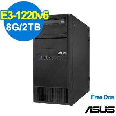 TS100-E9 E3-1220v6/8G/2TBx1/FD