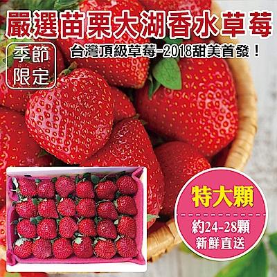 (滿799免運)【天天果園】嚴選苗栗大湖香水草莓(24-28顆/共約400g) x1盒