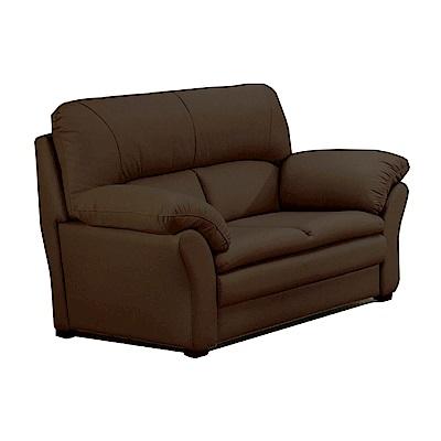 綠活居 艾利森時尚半牛皮革二人座沙發-155x88x99cm-免組