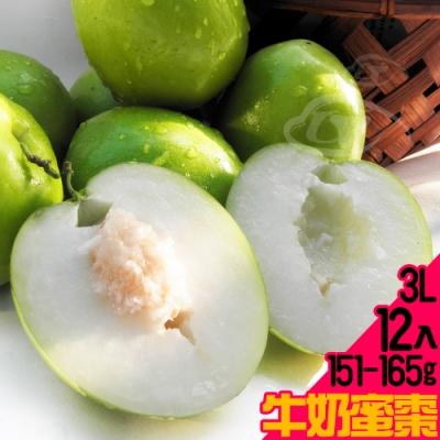【果之家】燕巢產銷履歷網室巨無霸3L牛奶蜜棗/金桃蜜棗12顆裝禮盒(單顆約155g)