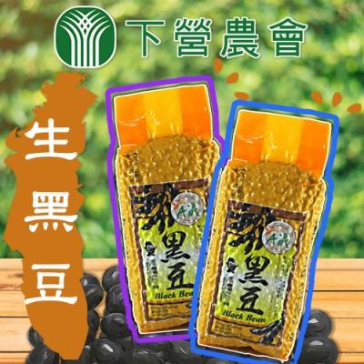 【下營農會】生黑豆 ( 600g / 包 x2包)