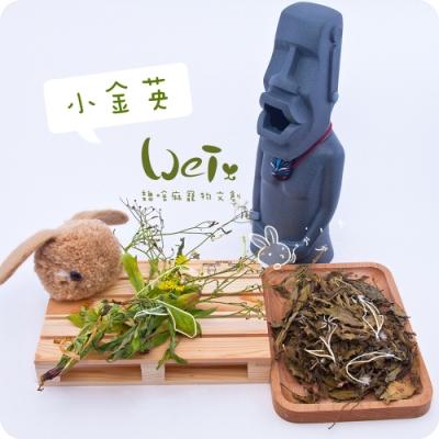 魏啥麻兔鼠寵物手工零食 - 乾燥小金英 10g 寵物零食/點心