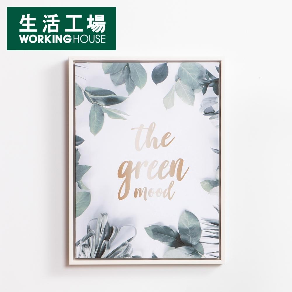 【滿千折百 可累折-生活工場】Green mood掛畫40x30CM