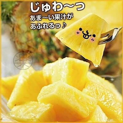 【天天果園】菲律賓進口無眼菠蘿鳳梨(每顆700g) x5顆