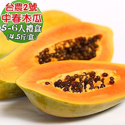 愛蜜果 屏東台農2號中春木瓜5-6顆禮盒 (約4.5斤/盒)