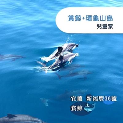 (宜蘭)新福豐36號賞鯨+環龜山島-兒童票