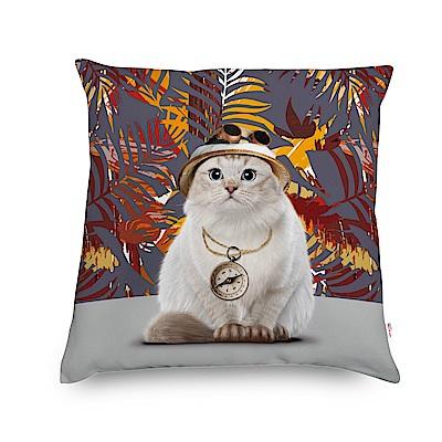 法國數位藝廊-貓貓抱枕/靠墊-探險貓(灰)-含芯/40x40