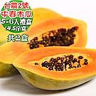 愛蜜果 屏東台農2號中春木瓜5-6顆禮盒 共2盒(約4.5斤/每盒)