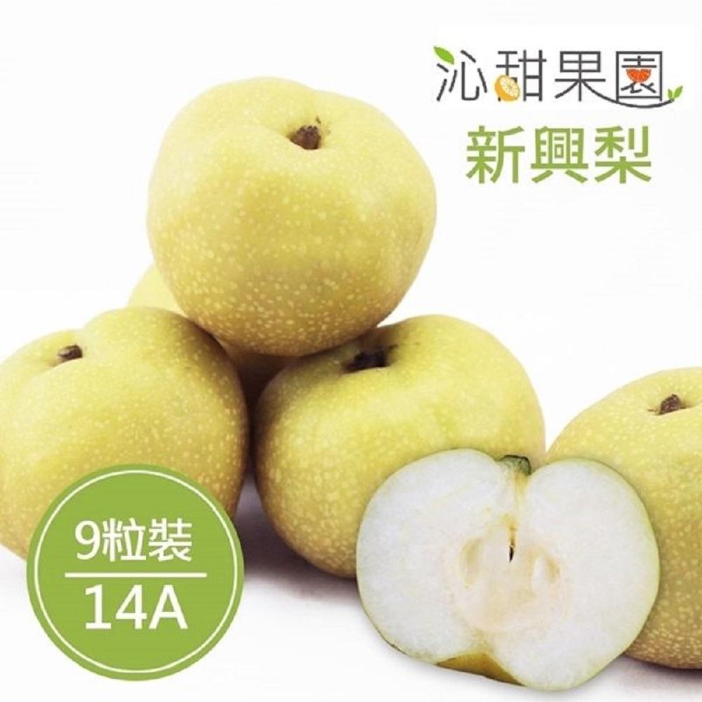 沁甜果園SSN 苗栗卓蘭新興梨(14A,9粒裝)