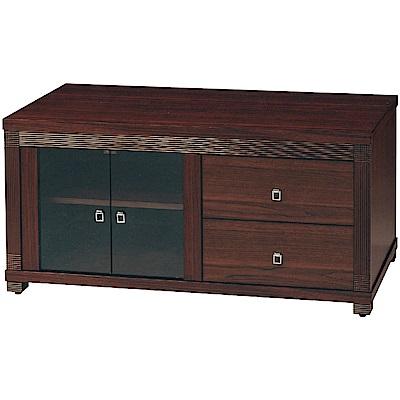 綠活居 波卡時尚4尺美型電視櫃/視聽櫃-120x54x57cm免組