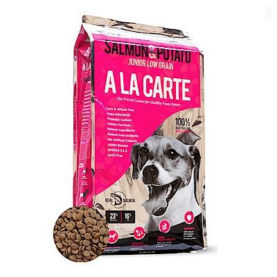 阿拉卡特敏感肌膚犬-鮭魚低穀配方 18kg