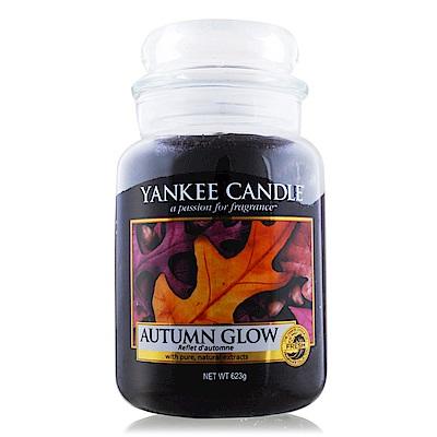 YANKEE CANDLE 香氛蠟燭-秋天的光芒 Autumn Glow 623g
