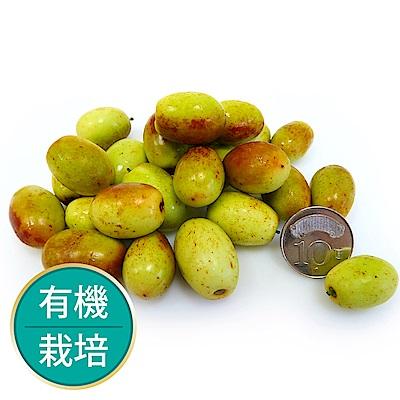 【果物配】紅棗.有機(2.4kg/4盒入)