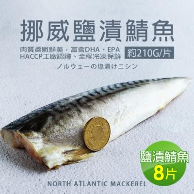 築地一番鮮-厚片超大油質豐厚挪威薄鹽鯖魚8片(約210g片)免運組
