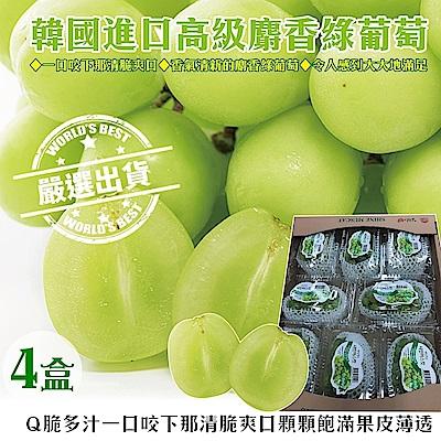 【天天果園】韓國麝香綠葡萄(每盒約600g) x4盒(串)