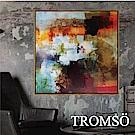 TROMSO北歐風尚板畫有框畫-光彩暖陽60X60CM