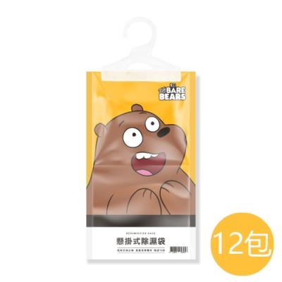 熊熊遇見你 吊掛式除濕掛袋160gx12包(4款圖案可選)