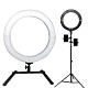 YADATEK 18吋可調色溫超薄LED環形攝影燈(YR-800A)送240cm燈架三機位 product thumbnail 1
