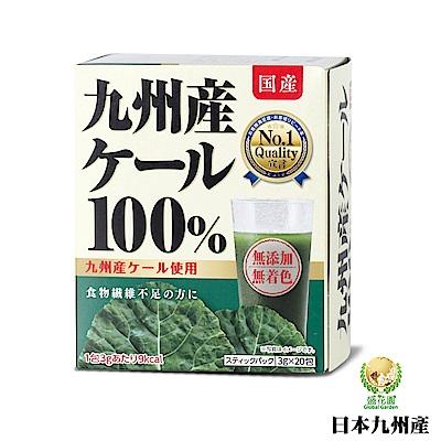 日本九州產 100%羽衣甘藍菜青汁(20入組)