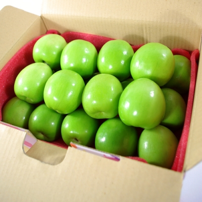 【鮮果日誌】A級 屏東高樹蜜棗 (16斤原箱裝)