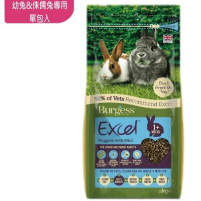 英國伯爵Burgess 幼兔與侏儒兔專用飼料 2KG-單包入