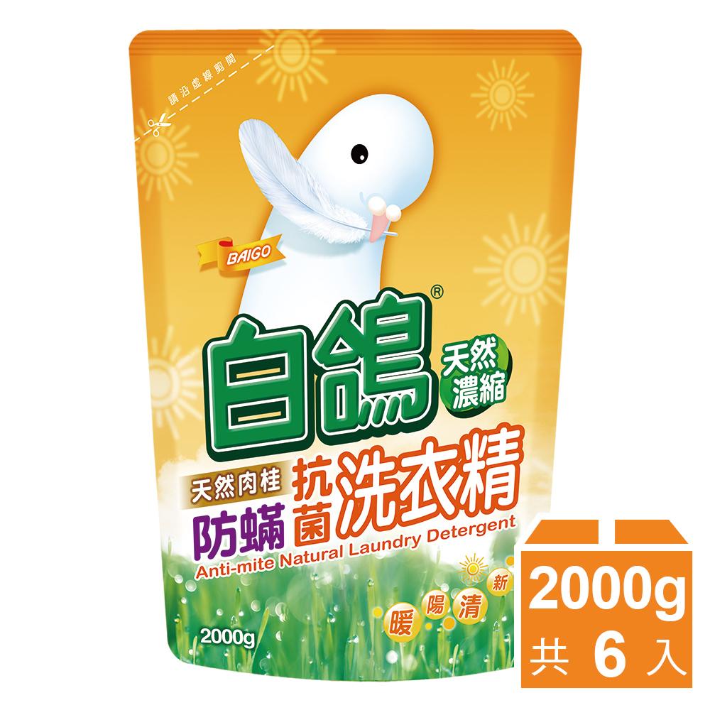 白鴿 天然濃縮防蹣洗衣精補充包-天然肉桂2000gx6入/箱