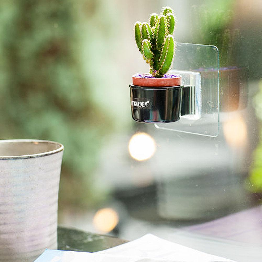 My Garden療癒植物容器 壁貼式/1吋盆栽架X3入-DY521