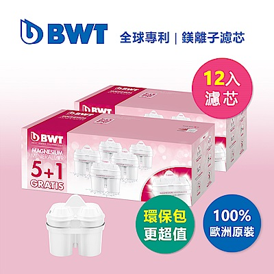 【BWT德國倍世】Mg2+鎂離子長效濾芯環保超值組-12入