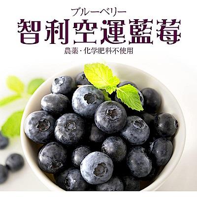 【天天果園】智利空運新鮮藍莓(每盒約125g) x5盒