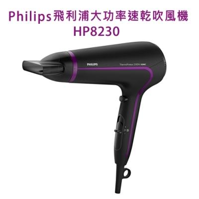 Philips 飛利浦大功率速乾吹風機 HP8230