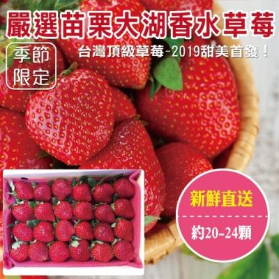 買1送1【天天果園】嚴選苗栗大湖香水草莓20-24顆 共2盒(每盒約400g)