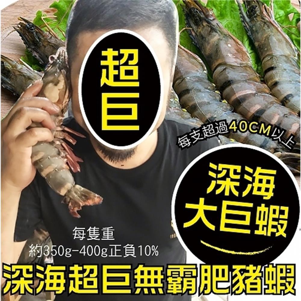 【海陸管家】比臉大深海肥豬蝦(每隻350-400g) x2隻