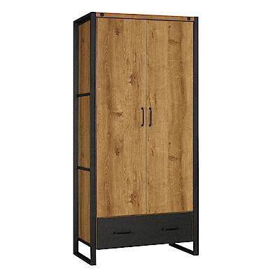 文創集 艾亞倫時尚2.9尺二門衣櫃/收納櫃-88x58x196cm免組