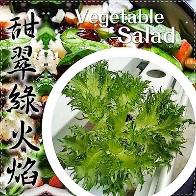 (任選12朵)【天天果園】台灣小農溫室萵苣-甜脆綠火焰(約110g)