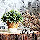 Meric Garden  Zakka風格高仿真植物盆栽(綠半球S) product thumbnail 1